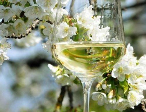 Weintour Weinviertel 7. & 8. April 2018